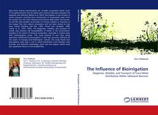 Обложка The Influence of Bioirrigation