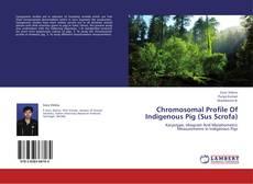 Copertina di Chromosomal Profile Of Indigenous Pig (Sus Scrofa)