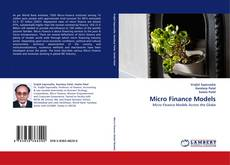 Micro Finance Models kitap kapağı