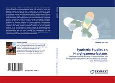 Copertina di Synthetic Studies on N-aryl-gamma-lactams