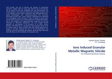 Copertina di Ions Induced Granular Metallic Magnetic Silicide