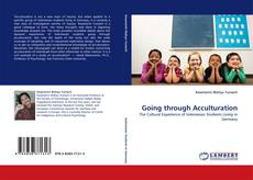 Bookcover of Going through Acculturation