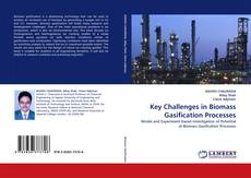 Copertina di Key Challenges in Biomass Gasification Processes