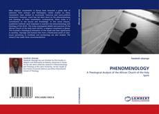 Capa do livro de PHENOMENOLOGY