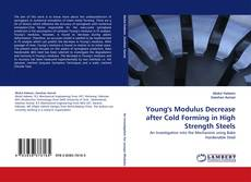 Young''s Modulus Decrease after Cold Forming in High Strength Steels的封面