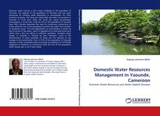 Portada del libro de Domestic Water Resources Management In Yaounde, Cameroon
