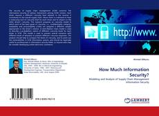 Bookcover of How Much Information Security?