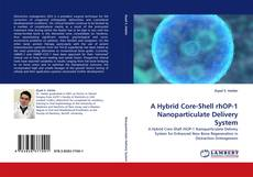 Bookcover of A Hybrid Core-Shell rhOP-1 Nanoparticulate Delivery System