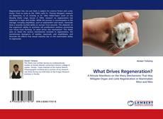 Couverture de What Drives Regeneration?