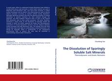 Copertina di The Dissolution of Sparingly Soluble Salt Minerals