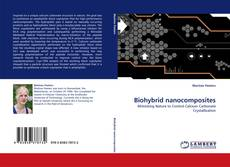 Bookcover of Biohybrid nanocomposites