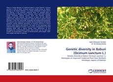 Copertina di Genetic diversity in Baburi (Ocimum sanctum L.)