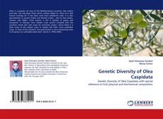 Bookcover of Genetic Diversity of Olea Caspidata