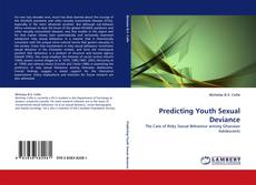 Couverture de Predicting Youth Sexual Deviance