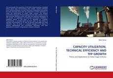 Обложка CAPACITY UTILIZATION, TECHNICAL EFFICIENCY AND TFP GROWTH