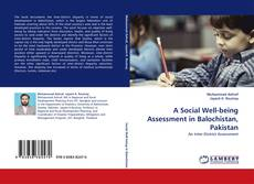 Bookcover of A Social Well-being Assessment in Balochistan, Pakistan