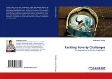 Tackling Poverty Challenges的封面