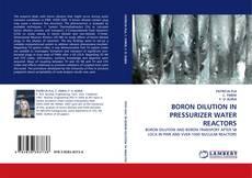 Couverture de BORON DILUTION IN PRESSURIZER WATER REACTORS