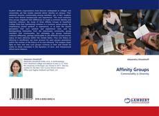 Couverture de Affinity Groups