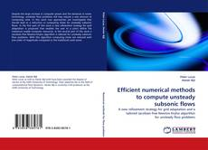 Bookcover of Efficient numerical methods to compute unsteady subsonic flows