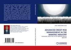 Portada del libro de ADVANCED CREDIT RISK MANAGEMENT IN THE BANKING INDUSTRY