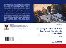 Обложка Assessing the State of Water Supply and Sanitation in Zimbabwe