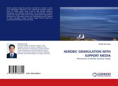 Bookcover of AEROBIC GRANULATION WITH SUPPORT MEDIA