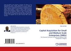 Buchcover von Capital Acquisition for Small and Medium Scale Enterprises (SMEs)
