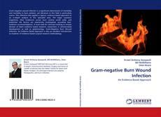 Borítókép a  Gram-negative Burn Wound Infection - hoz