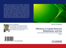 Bookcover of Efficiency in Capital Resource Mobilization and Use