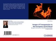 Portada del libro de Images of Transgression in the European Social Novel
