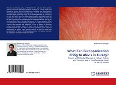 Couverture de What Can Europeanization Bring to Alevis in Turkey?