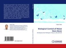 Bookcover of Biological Control of Maize Stem Borer