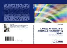 Bookcover of A NOVEL INSTRUMENT OF REGIONAL DEVELOPMENT IN TURKEY: