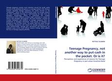Teenage Pregnancy, not another way to put cash in the pocket. Or is it? kitap kapağı
