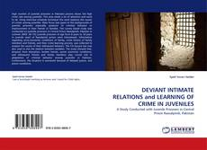 Copertina di DEVIANT INTIMATE RELATIONS and LEARNING OF CRIME IN JUVENILES