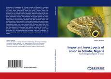Bookcover of Important insect pests of onion in Sokoto, Nigeria