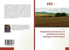 Copertina di Adaptation du blé dur en condition de stress hydrique et thermique