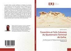 Обложка Travertins et Tufs Calcaires du Quaternaire Terminal de Gafsa