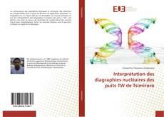 Bookcover of Interprétation des diagraphies nucléaires des puits TW de Tsimiroro