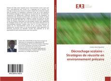 Buchcover von Décrochage scolaire - Stratégies de réussite en environnement précaire