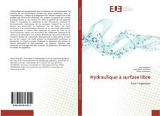 Bookcover of Hydraulique à surface libre