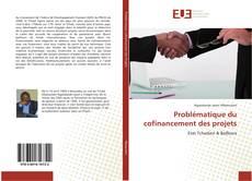 Copertina di Problématique du cofinancement des projets