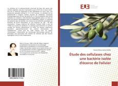 Bookcover of Étude des cellulases chez une bactérie isolée d'écorce de l'olivier