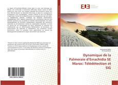 Capa do livro de Dynamique de la Palmeraie d'Errachidia SE Maroc: Télédétection et SIG