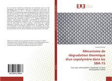 Buchcover von Mécanisme de dégradation thermique d'un copolymère dans les SBA-15