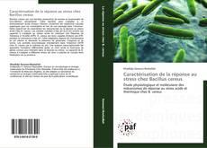Copertina di Caractérisation de la réponse au stress chez Bacillus cereus