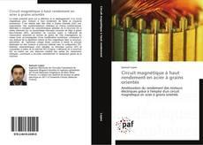 Bookcover of Circuit magnétique à haut rendement en acier à grains orientés