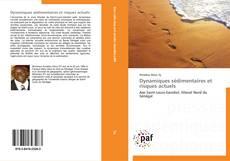 Dynamiques sédimentaires et risques actuels的封面