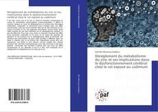 Bookcover of Dérèglement du métabolisme du zinc et ses implications dans le dysfonctionnement cérébral chez le rat exposé au cadmium